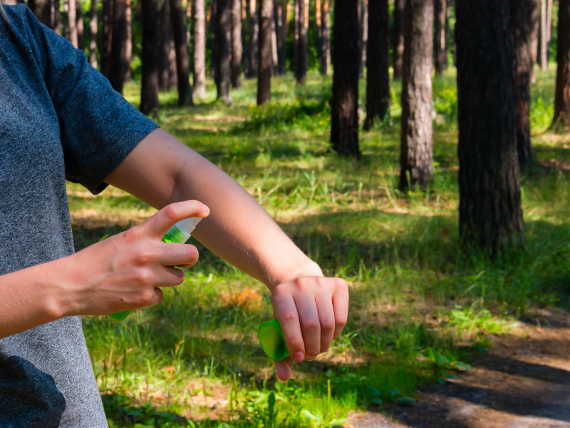 What Are the Best Mosquito Repellents on the Market?