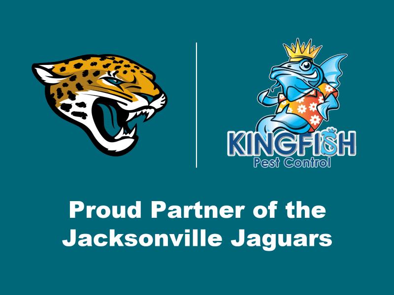 Kingfish Pest Control is a Proud Partner of the Jacksonville Jaguars