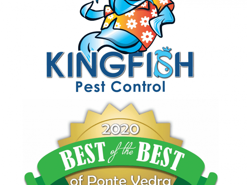 Kingfish Pest Control Named Best of Ponte Vedra for Pest Control