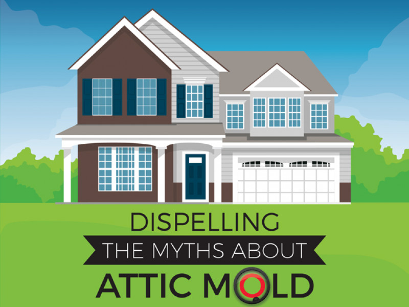 Dispelling the Myths about Attic Mold