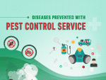 Diseases Prevented with Pest Control Service
