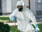 Differences between Green and Organic Pest Control