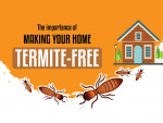 The Importance of Making Your Home Termite-Free