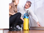 Signs That You Need a Professional for Pest Control