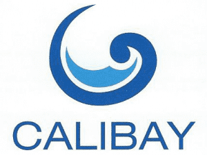 Calibay Pool Models