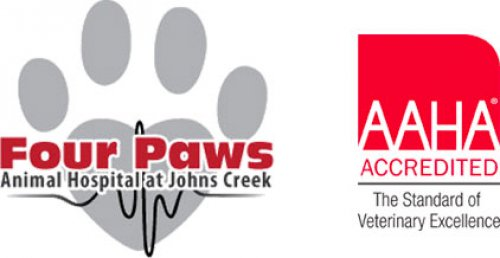 Four Paws Animal Hospital