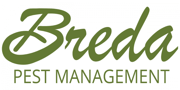 Breda Pest Management