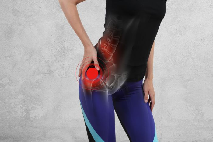 Image for Hip Joint